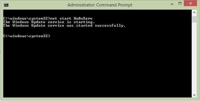Starting Windows Update Service